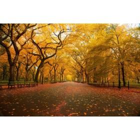 Φύση -Φθινόπωρο